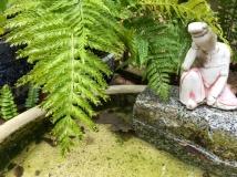 water-garden-stature